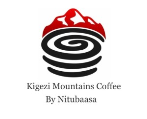 nitubaasa-logo